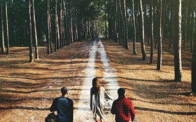 Is wandelen goed voor je brein?